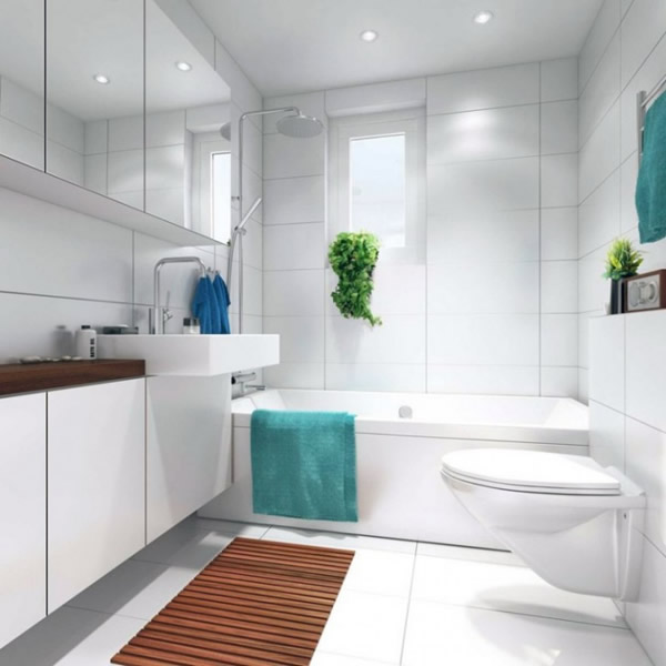 white small bathroom decorating layout