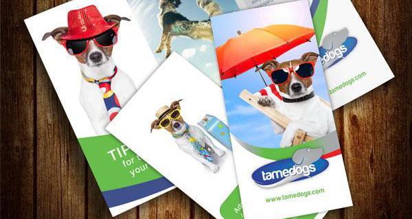 tri fold, brochure design mockup, psd,ai http://hative.com/30-free-brochure-templates-download/