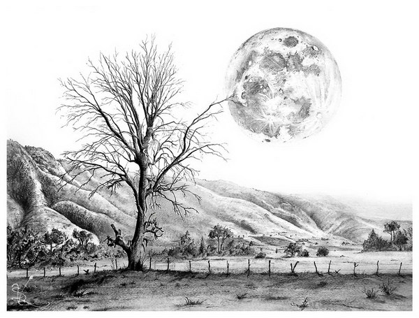 Tree and moon pencil drawing