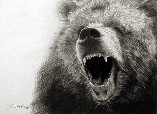 angry bear black and white - photo #39