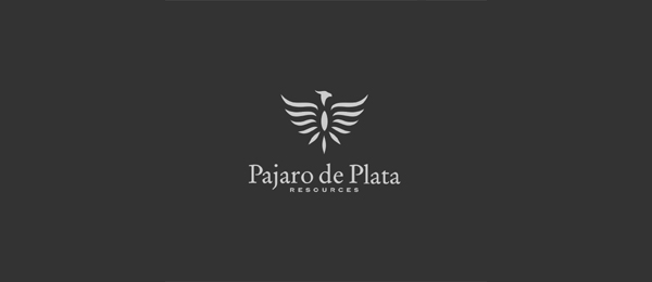 bird logo pajaro de plata