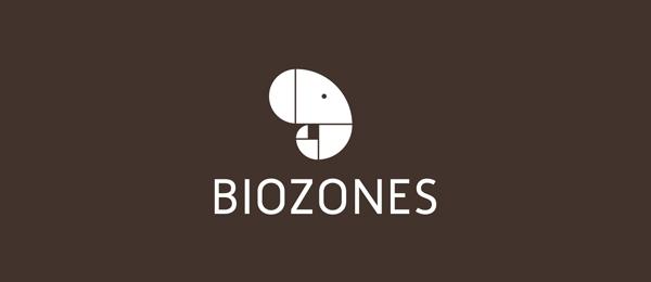 spiral logo biozones