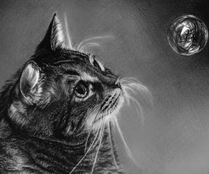 cat drawing thumbnail