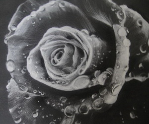 flower-drawing-thumbnail
