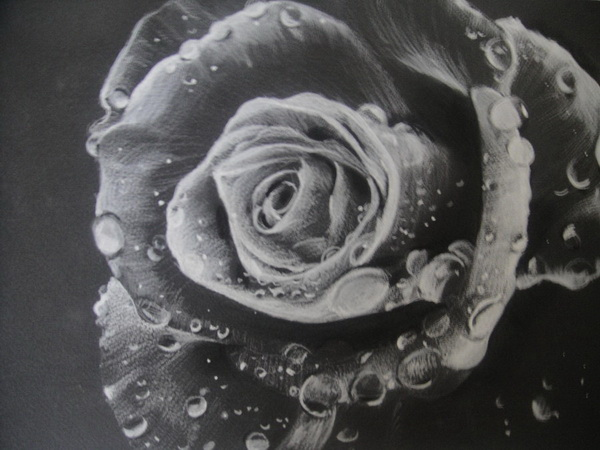 10 Beautiful Flower Drawings For Inspiration Hative