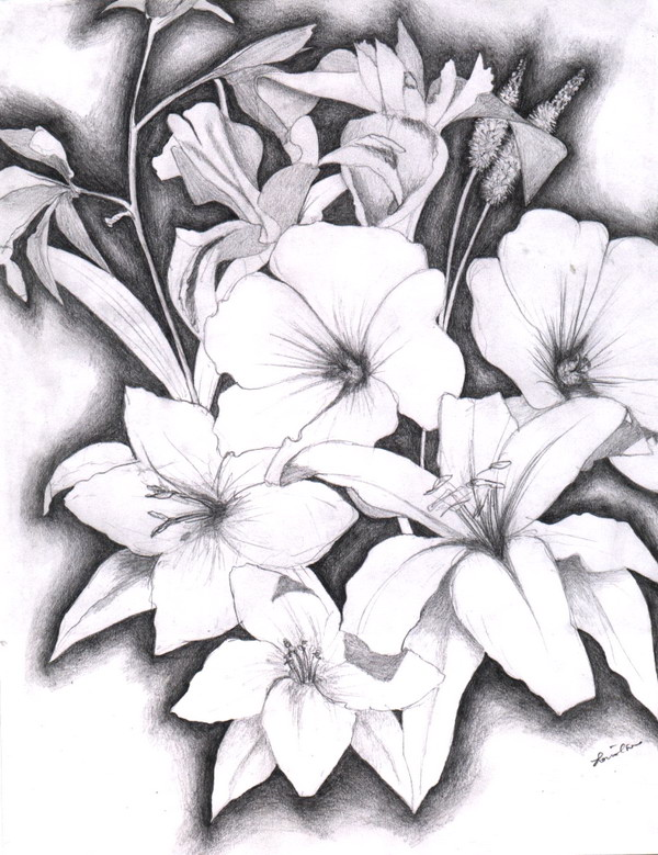 10+ Beautiful Flower Drawings for Inspiration - Hative