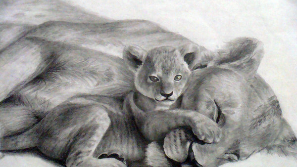 10 Cool Lion Drawings For Inspiration Hative