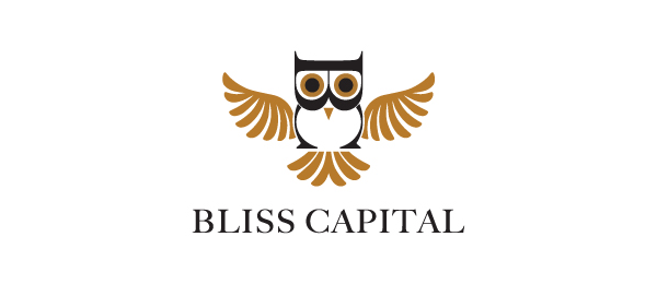 owl logo bliss capital 16