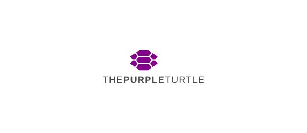purple turtle logo idea 23