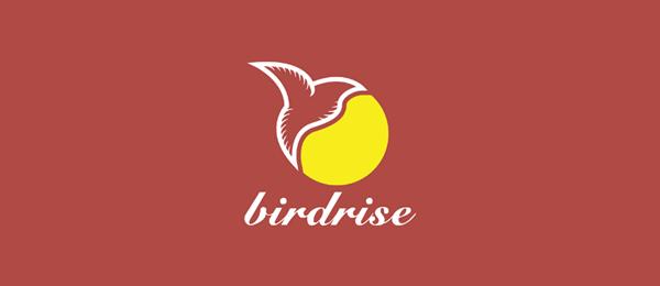 sun logo bird rise 41