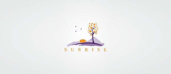 sunrise logo design 27