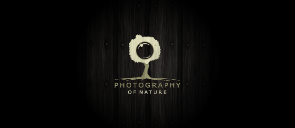 photography tree logo 34