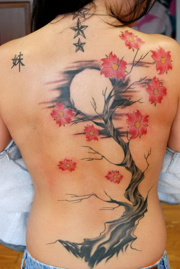 20 moon cherry blossom tree back