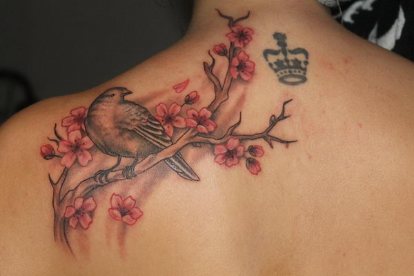 37 cherry blossom and bird