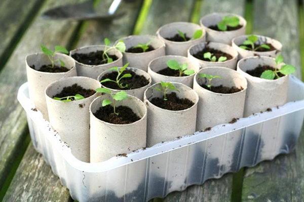 43 indoor planters