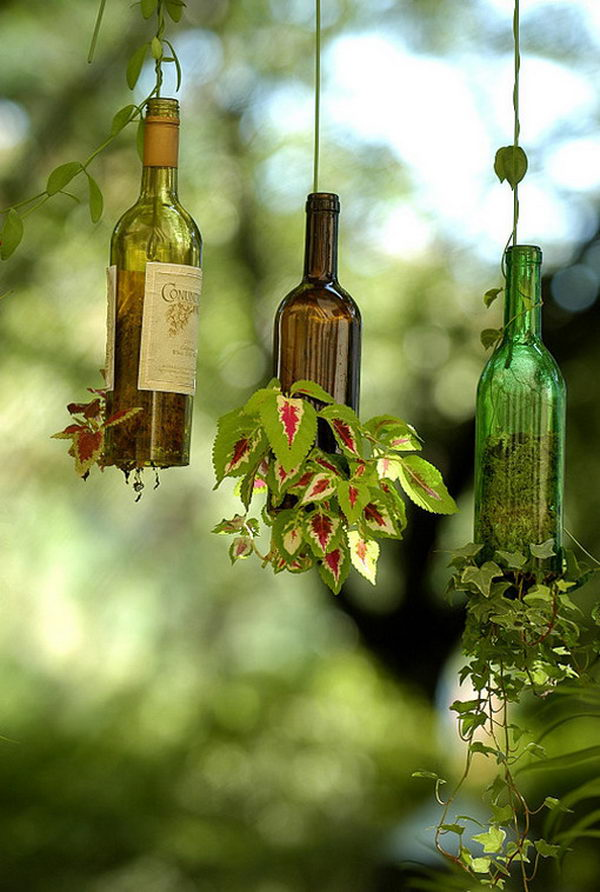 DIY Wine Bottle Hanging Planters.
