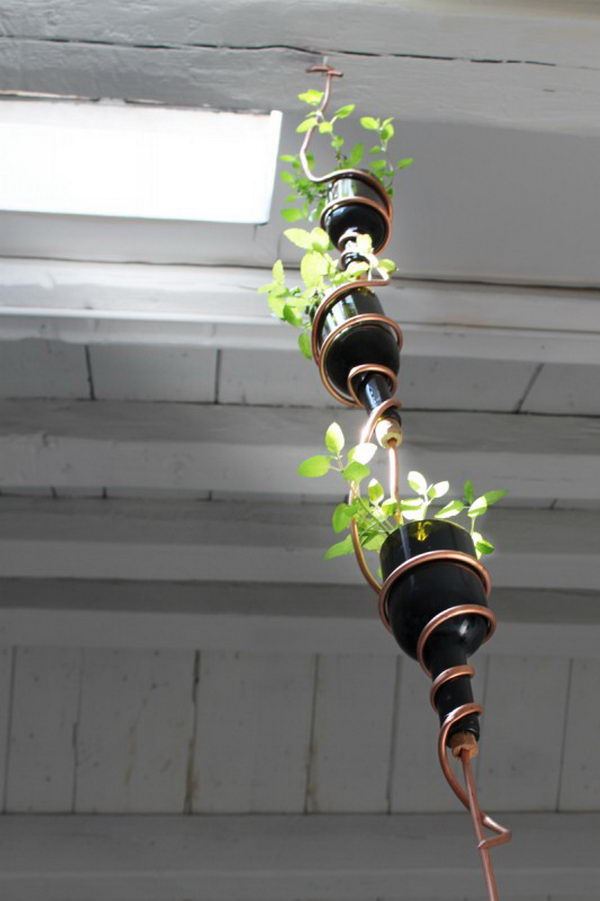 DIY Herb Garden Made from Wine Bottles.