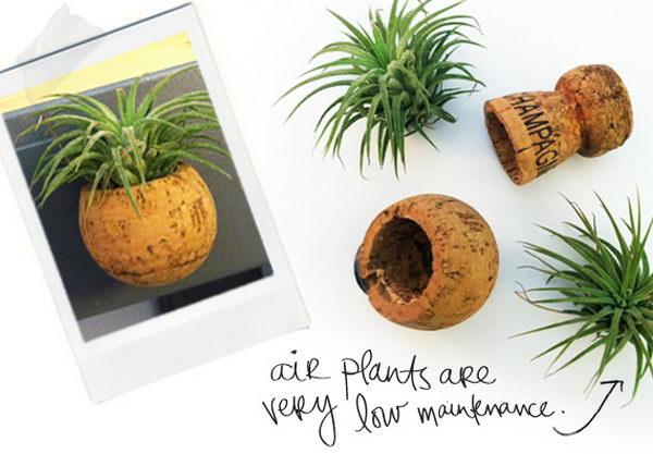 DIY Wine Cork Mini Plants.