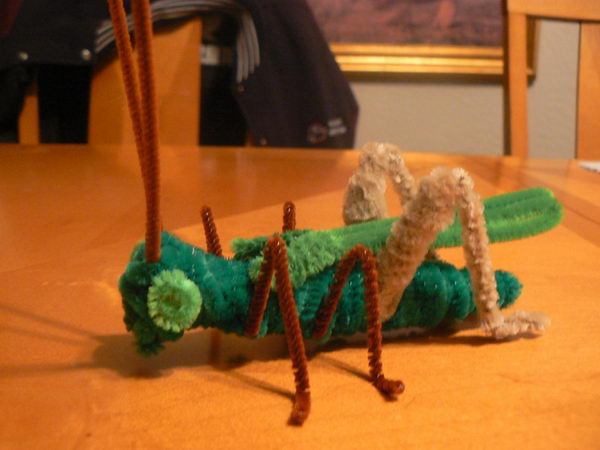 34 diy grasshopper http://hative.com/pipe-cleaner-animals-for-kids/