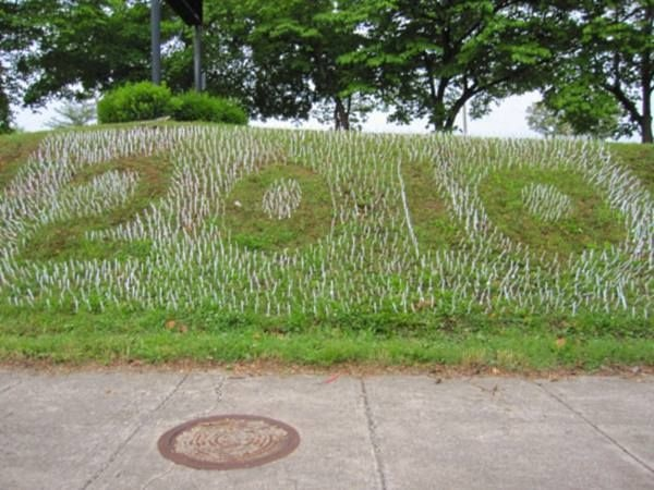 16-plastic-forks-in-the-grass