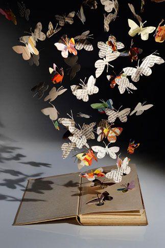 Butterflies in Book,