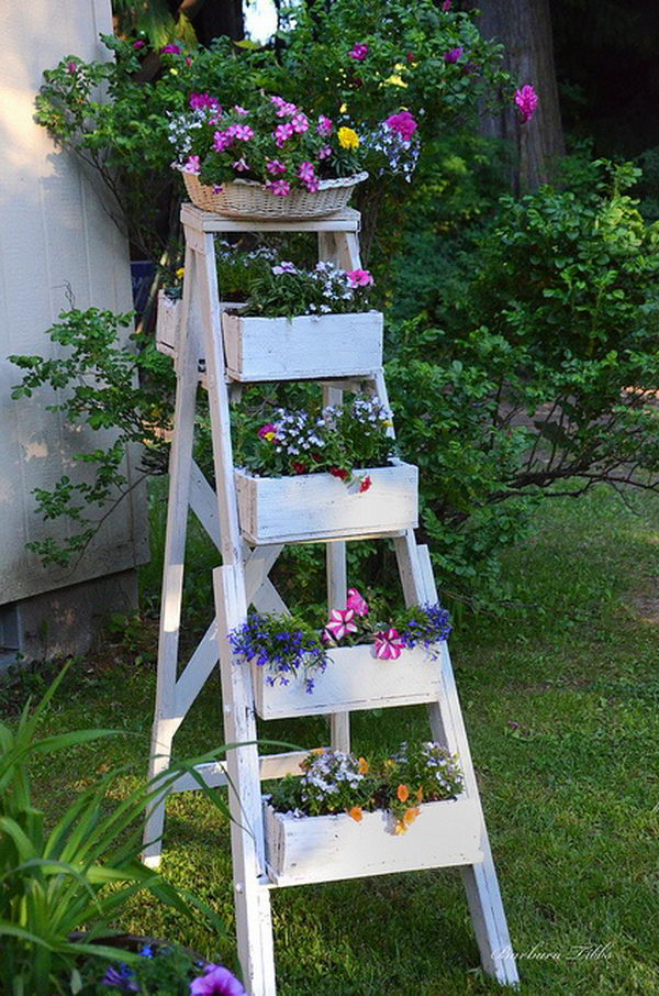 Home Design Ideas Decorating Gardening: 20 Creative Ladder Ideas For Home Decoration