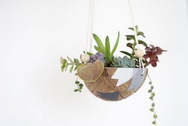 Coconut Hanging Planter.