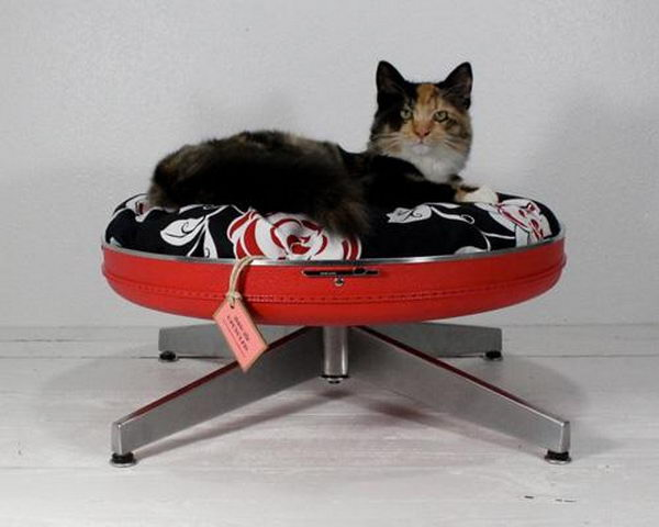 20  cool pet bed ideas