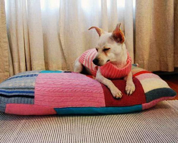 20 Cool Pet Bed Ideas Hative
