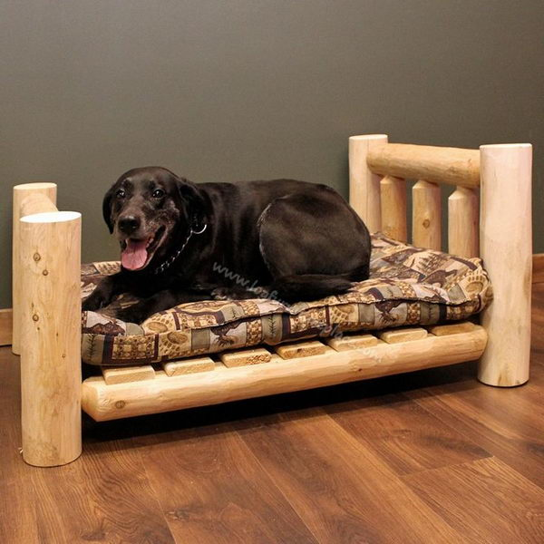 20+ Cool Pet Bed Ideas