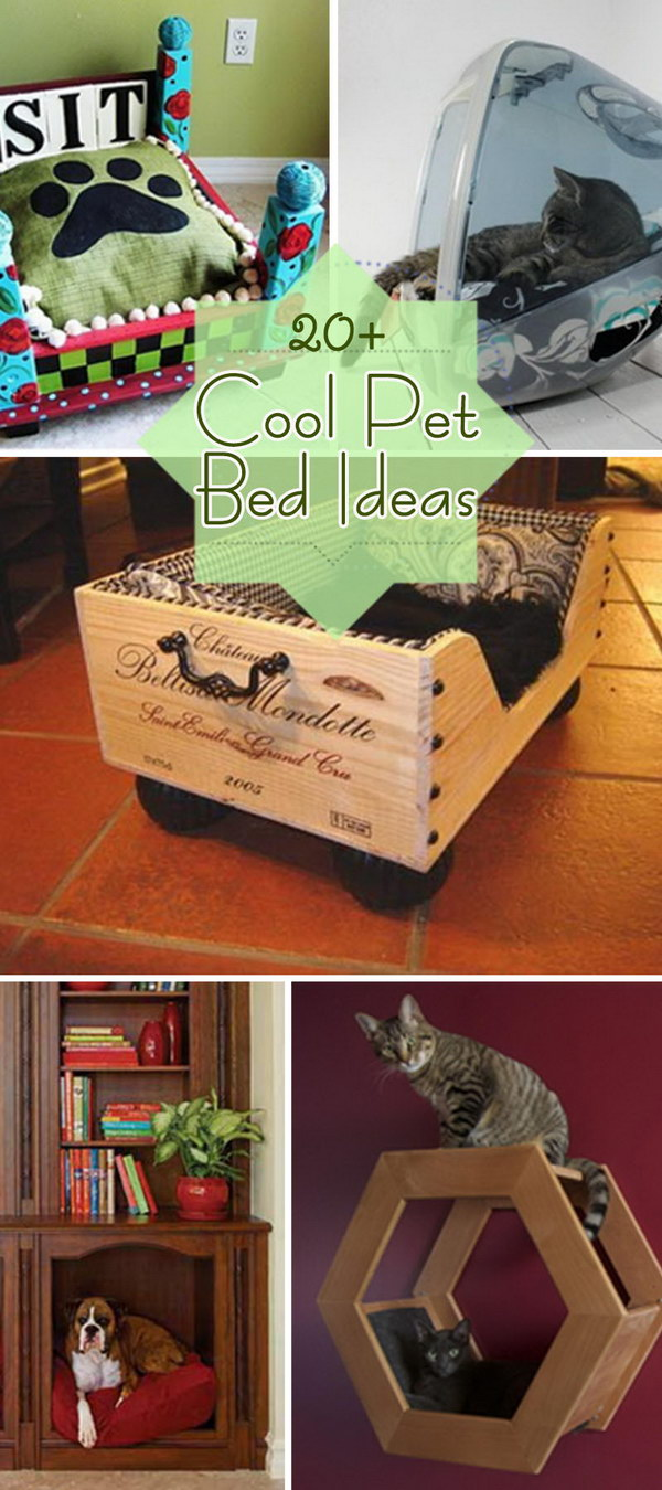 Cool Pet Bed Ideas!
