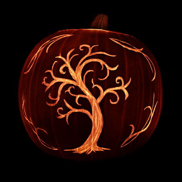 Tree Pumpkin.