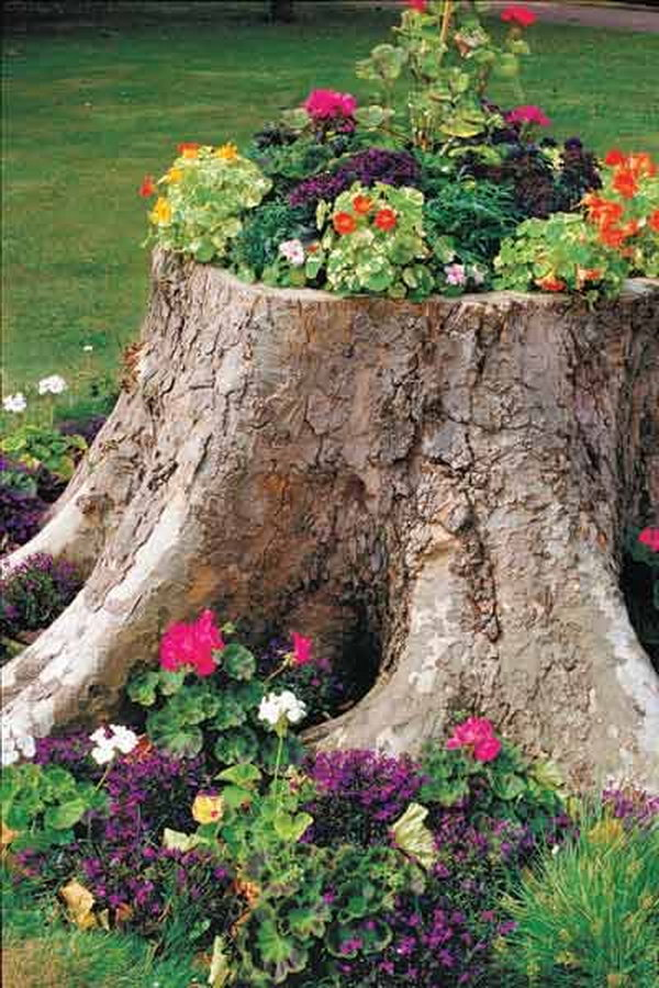 20 fun and creative container gardening ideas hative for Tall tree stump ideas