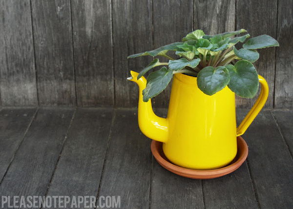 DIY upcycled pitcher planter. These container gardening ideas offer a great way to brighten your surroundings immediately. Make your home look different unique and interesting.