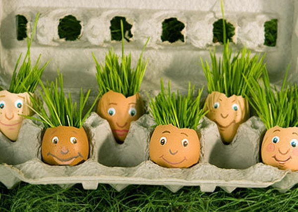 Eggshell planters. These container gardening ideas offer a great way to brighten your surroundings immediately. Make your home look different unique and interesting.