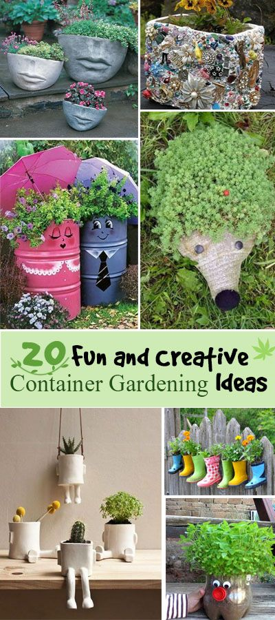 Fun and Creative Container Gardening Ideas.