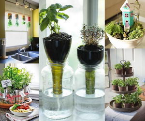 indoor-garden-collage