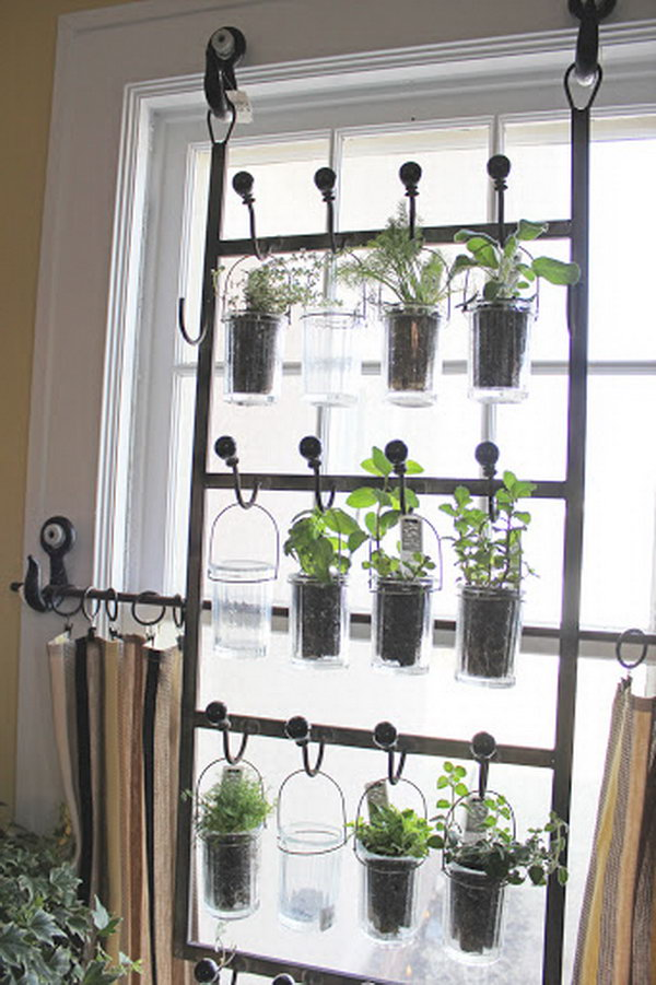 Merveilleux Indoor Garden From Hooks And Rods.