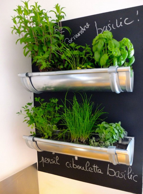 Gutters repurposed for herbs in the kitchen.