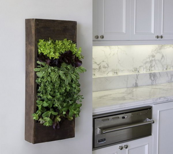 Indoor Garden Box Inspiration Of Vertical Herb Garden in Your Kitchen Image