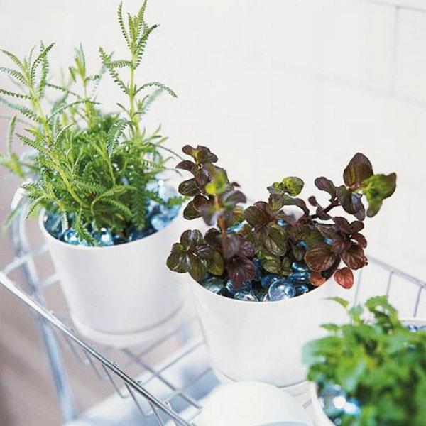 Bath time herbs.