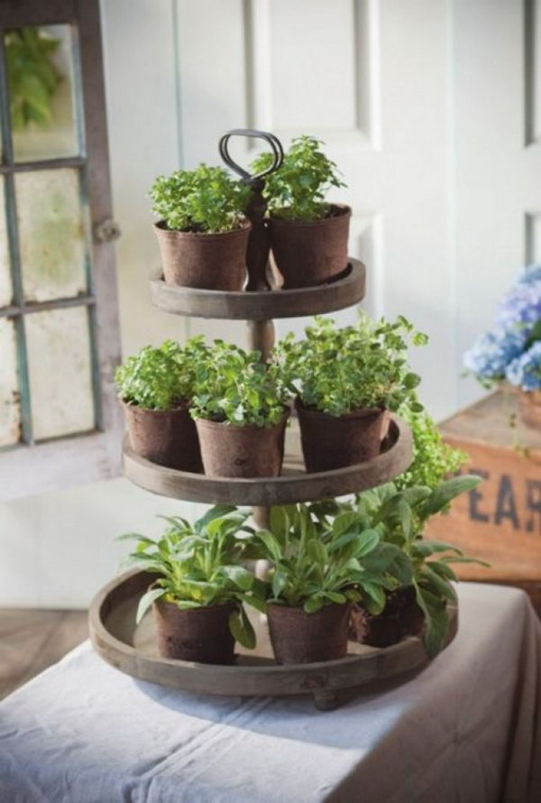 Indoor Herb Garden Ideas Part - 39: Tiers Of Herbs.