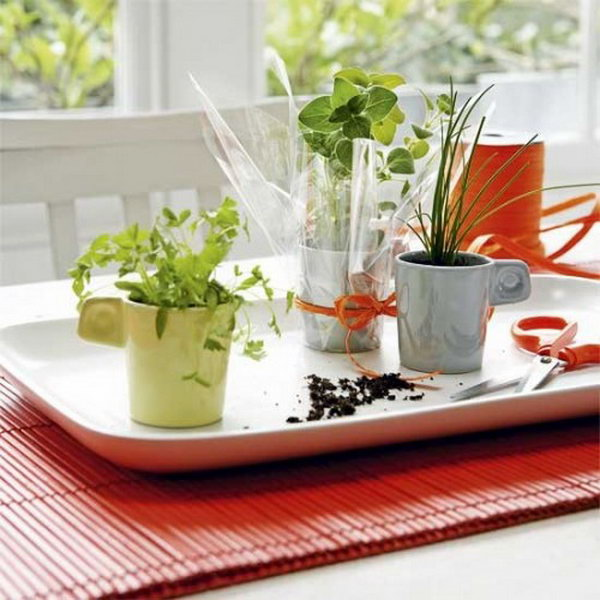 Diy Indoor Herb Garden