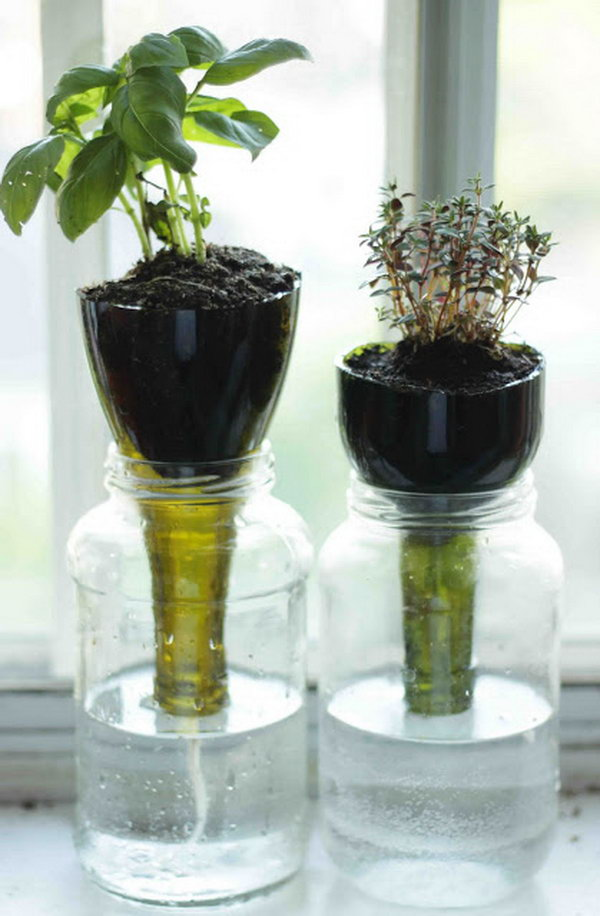 Self Watering Gl Bottle Planters