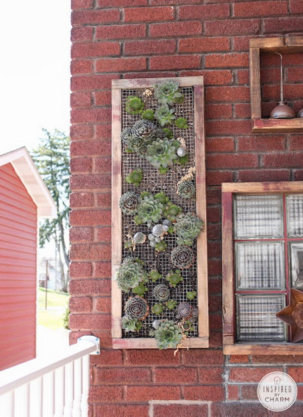 Wooden frame vertical garden. It allows plants to extend upward rather than grow along the surface of the garden. Doesn't take a lot of space and look so beautiful at the same time.