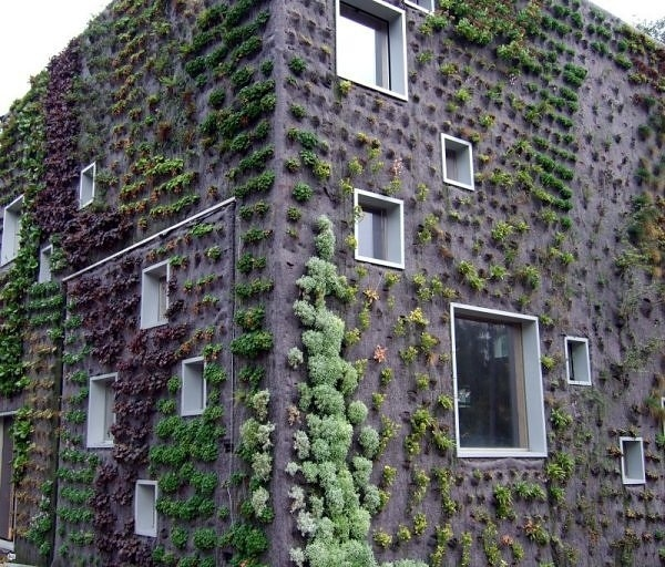 Living walls in the netherlands. It allows plants to extend upward rather than grow along the surface of the garden. Doesn't take a lot of space and look so beautiful at the same time.