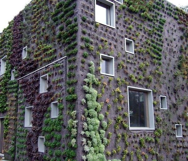 20 cool vertical gardening ideas hative for Living walls vertical gardens