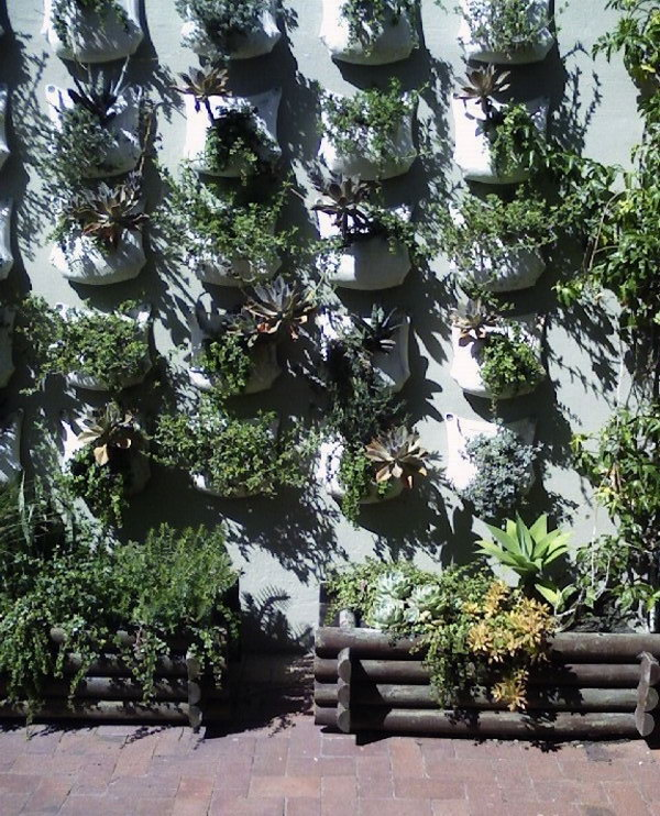Desert Garden Ideas: 20+ Cool Vertical Gardening Ideas
