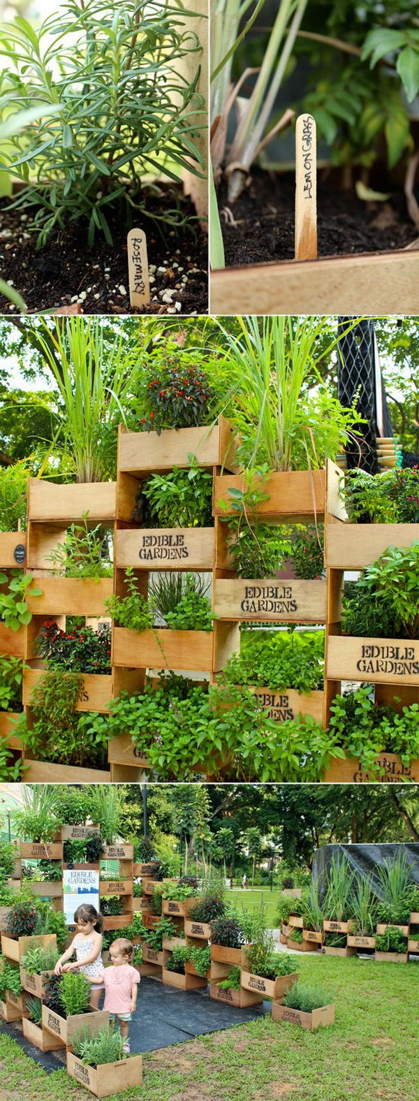 Vertical Garden From Old Crates. It Allows Plants To Extend Upward Rather  Than Grow Along