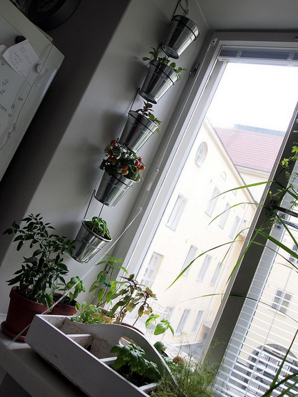 Vertical garden using ikea's kroken cutlery stands. It allows plants to extend upward rather than grow along the surface of the garden. Doesn't take a lot of space and look so beautiful at the same time.